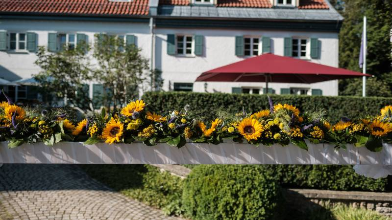 Sunflowers at Hotel Seitner Hof in Pullach in the Isar Valley